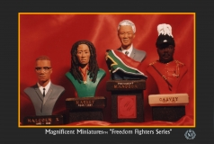 Freedom Fighters Series